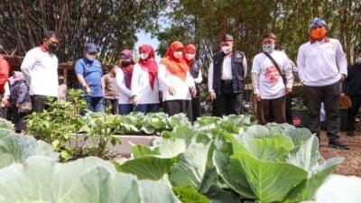 Buruan SAE, Konsep Ketahanan Pangan yang Libatkan Warga Kota Bandung!
