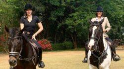 40 Arti Mimpi tentang Kuda, Maknanya Sungguh Mendalam Deh!